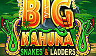 Big Kahuna Snakes And Ladders